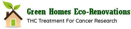 Green Homes Eco-Renovations